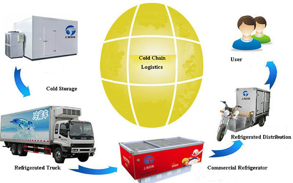 Cold Chain Logitstic